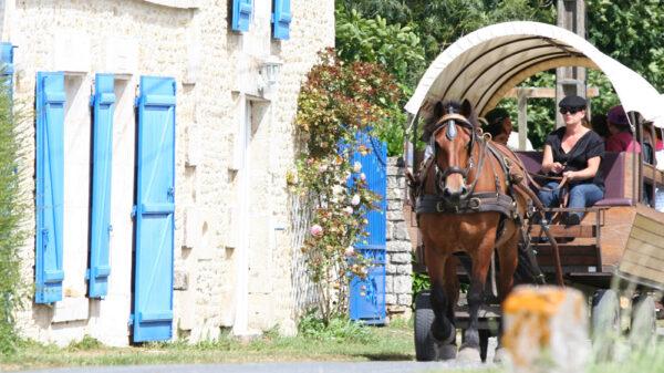 Les roulottes de l abbaye Maillezais Vendee balade en caleche en famille