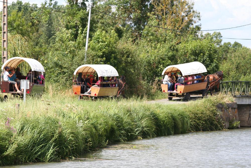 Les roulottes de l abbaye Maillezais Vendee balade en caleche pour les groupes
