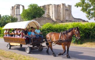 Balade en calèche marais poitevin Vendée